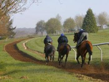 Six Furlong All Weather Gallop 1