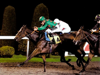 Lightning Charlie wins at Kempton - Monday 15th October