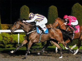Tinto wins at Kempton - Tuesday 16th October