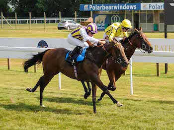 Tinto wins at Bath Racecourse - Tuesday 16th July
