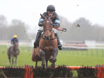 Manucci wins at Fontwell - Thursday 26th December