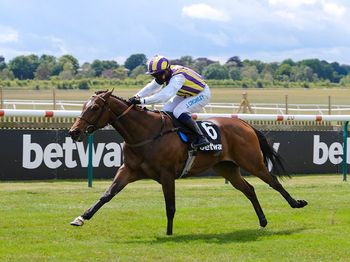 Tinto winning at Newmarket